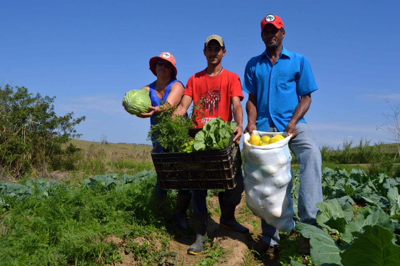 Cerca de 70% dos alimentos que chegam à da população são produzidos pela agricultura familiar. Foto: Igor de Nadai