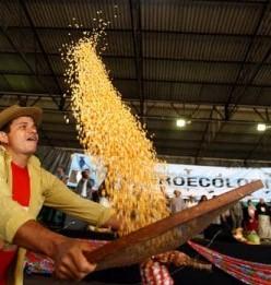 Jornada-de-Agroecologia-_foto-Leandro-Taques-248x300