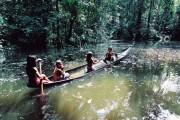 indios na floresta