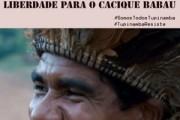 Cacique Babau