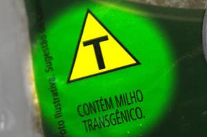rotulo_milho_transgenico