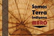 Teto choupana_TI Maró