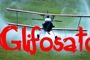 peligro glifosato-ecozonal