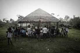 Foto: Amazônia.org/ Reprodução