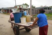 Jardim Tropical - como conseguir água (14)