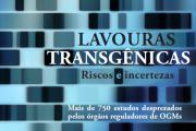 Livro Lavouras Transgênicas