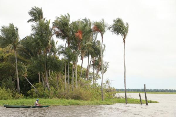 O Lago do Maicá, além de ser berçário de muitas espécies de peixes, é também fonte de renda e trabalho para comunidades que vivem no seu entorno. Foto por Bob Barbosa